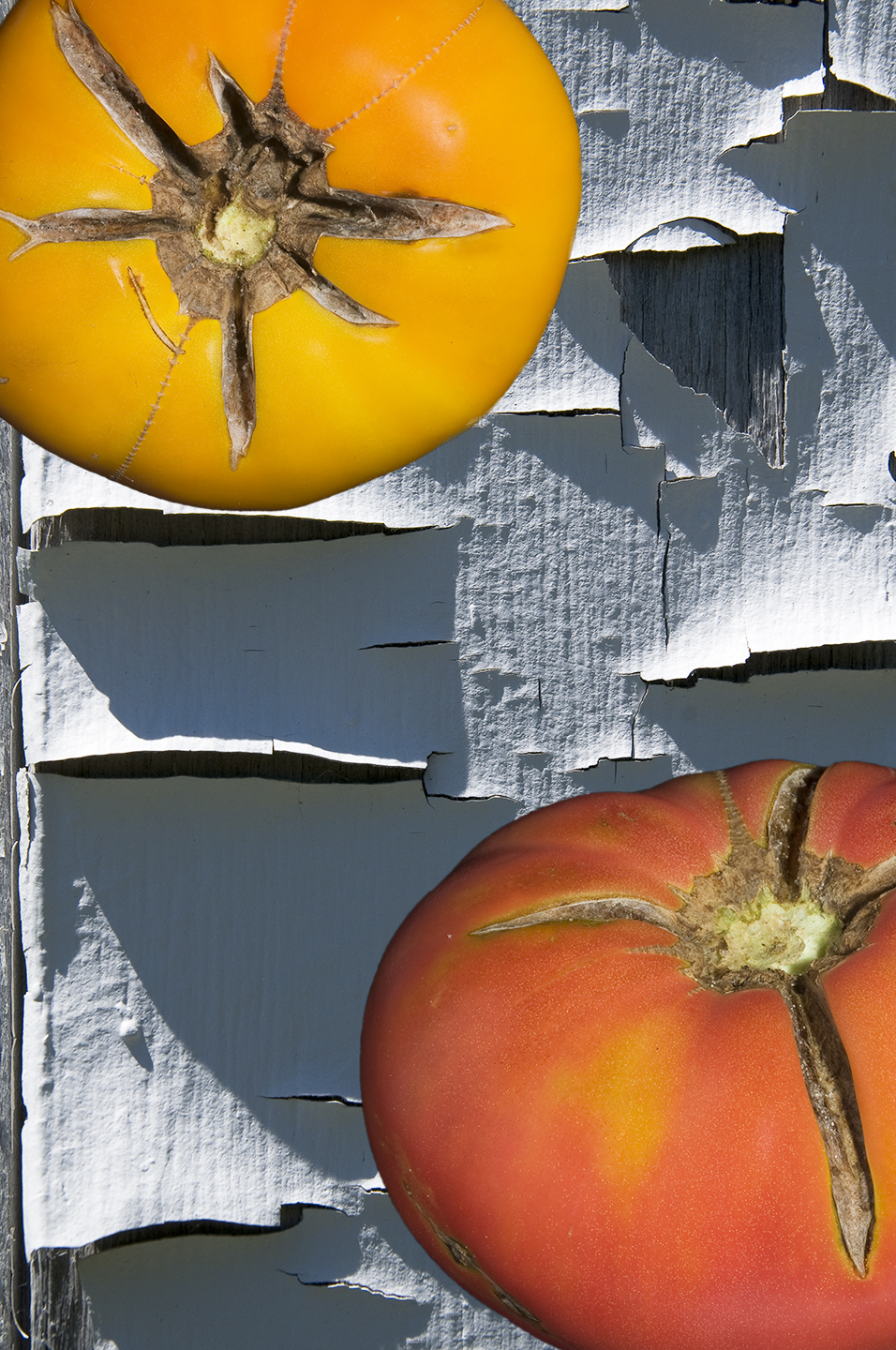 Tomatoes and Peeling Paint